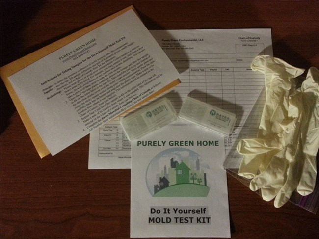 Verf: Do it Yourself Home Mold Test