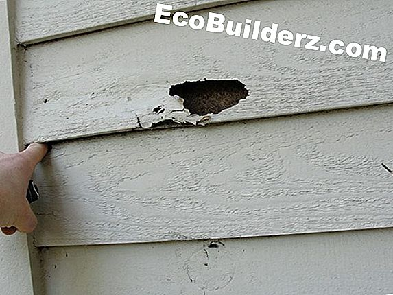 Verf: Rot Damage on Dormer Siding