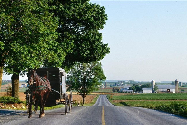 Amish blokhutten in Minnesota